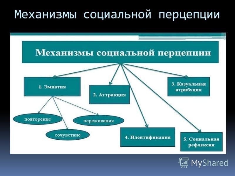 Механизмы социальной перцепции