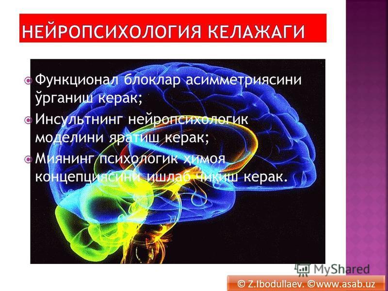 Функционал блоклар асимметриясини ўрганиж керак; Инсультнинг нейропсихология моделини яратиж керак; Миянинг психология ҳ имоя концепция сини ижлаб чи қ иж керак. © Z.Ibodullaev. ©www.asab.uz