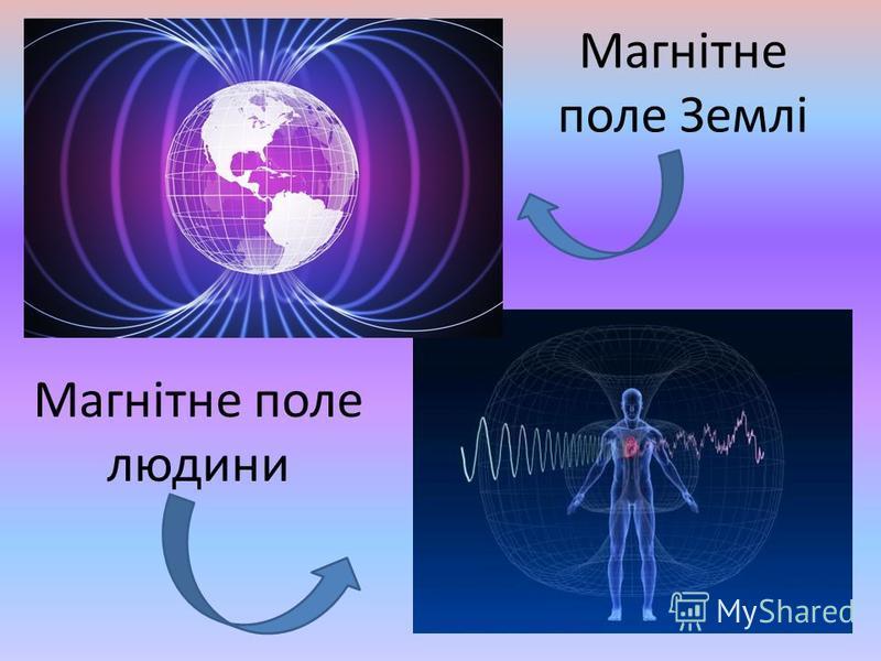 Магнітне поле Землі Магнітне поле людини