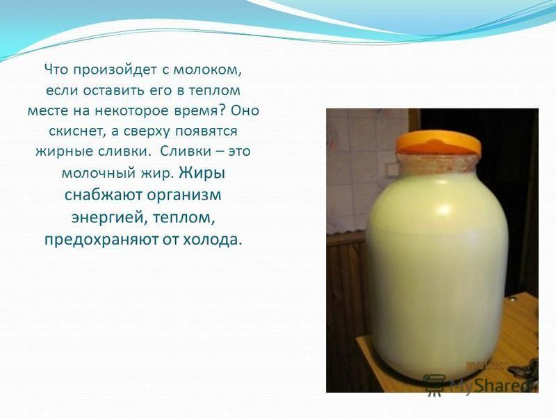 Что произойдет с молоком, если оставить его в теплом месте на некоторое время? Оно скиснет, а сверху появятся жирные сливки. Сливки – это молочный жир. Жиры снабжают организм энергией, теплом, предохраняют от холода.
