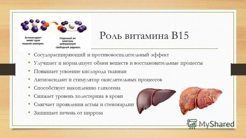 Роль витамина В15 Сосудорасширяющий и противовоспалительный эффект Улучшает и нормализует обмен веществ и восстановительные процессы Повышает усвоение кислорода тканями Антиоксидант и стимулятор окислительных процессов Способствует накоплению гликоге
