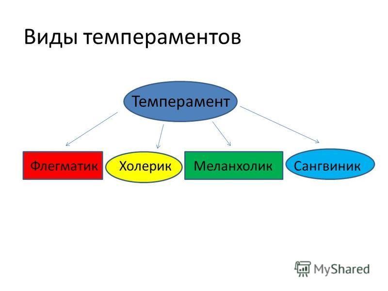 Виды темпераментов Темперамент Флегматик Холерик Меланхолик Сангвиник