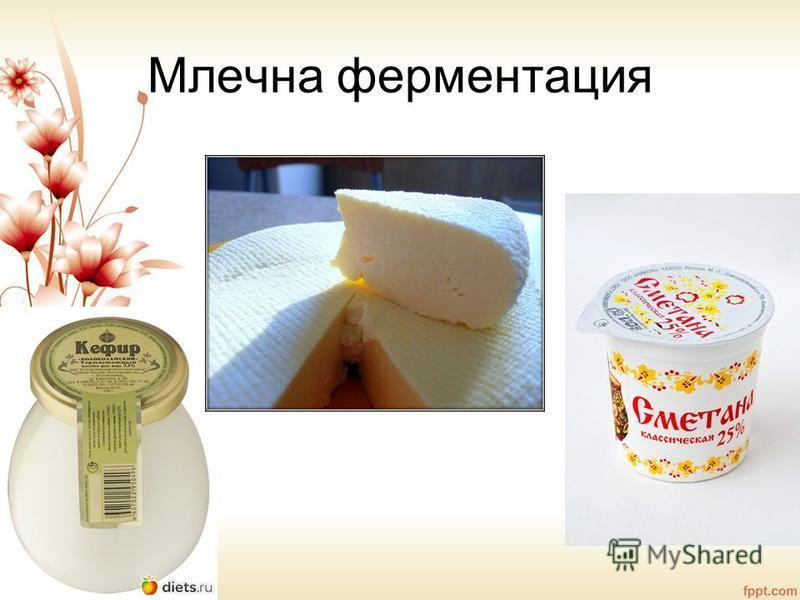 Млечна ферментация
