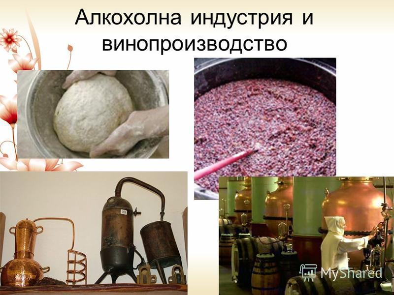 Алкохолна индустрия и винопроизводство