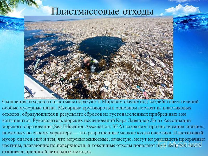 Пластмассовые отходы Скопления отходов из пластмасс образуют в Мировом океане под воздействием течений особые мусорные пятна. Мусорные круговороты в основном состоят из пластиковых отходов, образующихся в результате сбросов из густонаселённых прибреж