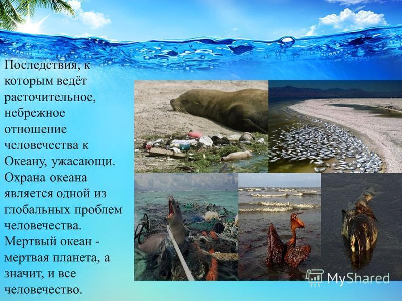Последствия, к которым ведёт расточительное, небрежное отношение человечества к Океану, ужасающи. Охрана океана является одной из глобальных проблем человечества. Мертвый океан - мертвая планета, а значит, и все человечество.